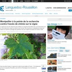 Montpellier à la pointe de la recherche contre l'excès de chimie sur la vigne - France 3 Languedoc-Roussillon