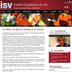 La filière vin dans le monde et en France - I.S.V MontpellierI.S.V Montpellier