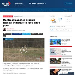Montreal launches organic farming initiative to feed city's poor - Montreal
