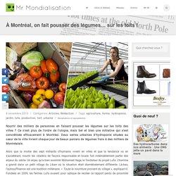 À Montréal, on fait pousser des légumes… sur les toits
