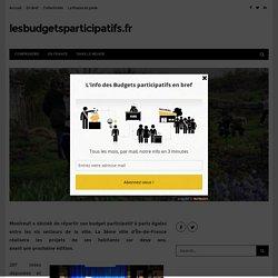A Montreuil, un budget participatif à parts égales – lesbudgetsparticipatifs.fr