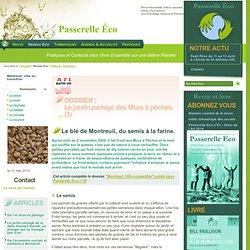 Villes en Transition - Le blé de Montreuil, du semis à la farine. -
