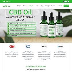 CBD Oil Wellness Benefits