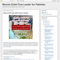 Moonis Elahi-True Leader for Pakistan: Moonis Elahi Says KPK Crops in Danger