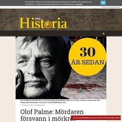 Olof Palme: Mördaren försvann i mörkret
