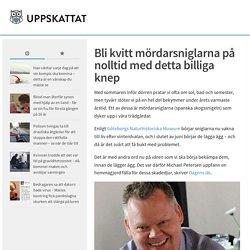 Bli kvitt mördarsniglarna på nolltid med detta billiga knep – Uppskattat.se