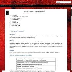 ESENCIAS MORFOLÓGICAS: CATEGORÍAS GRAMATICALES