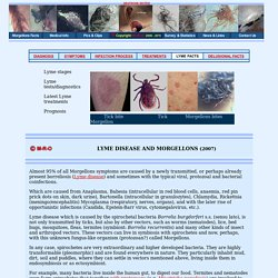 Morgellons tick lyme infections from unknown fungal parasites