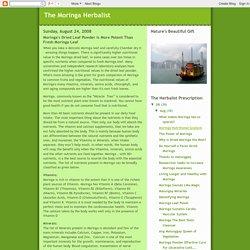 The Moringa Herbalist: Moringa's Dried Leaf Powder is More Potent Than Fresh Moringa Leaf