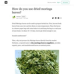 How do you use dried moringa leaves? - Herbcyte - Medium