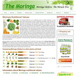 Moringa Nutritional Values