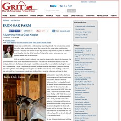 A Morning With a Goat Keeper - Iron Oak Farm Blog