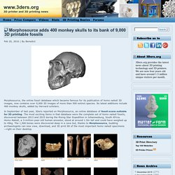 Morphosource adds 400 monkey skulls to its bank of 9,000 3D printable fossils