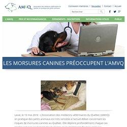 Les morsures canines préoccupent l'AMVQ - AMVQ