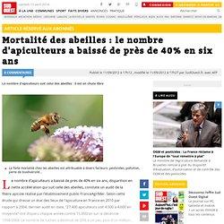 Mortalité des abeilles : le nombre d'apiculteurs a baissé de près de 40% en six ans
