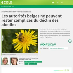 ECOLO_BE 08/04/14 Record du taux de mortalité des abeilles - Les autorités belges ne peuvent rester complices du déclin des abeilles