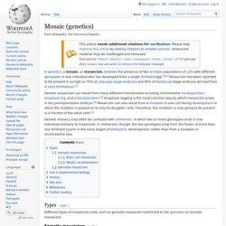 Mosaic (genetics)