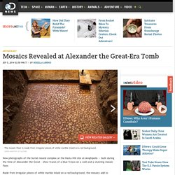 Mosaics Revealed at Alexander the Great-Era Tomb