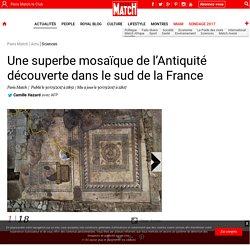 Une superbe mosaïque de l'Antiquité romaine découverte dans le sud de la France