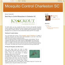 Mosquito Control Charleston SC