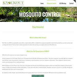 Mosquito Control In Charleston SC by Professionals
