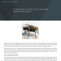 Professionals Can Take Care of Your Bed Bug Problem Quickly