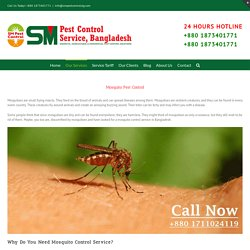 SM Pest: Mosquitoes Control Service in Bangladesh (Insect Killer)