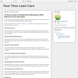 Your Time Lawn Care: An Easy Guide to Getting Rid of Mosquitoes With Effective Home Remedies