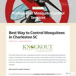 Get Rid From Mosquitoes With Mosquito Control Charleston SC