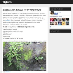 MOSS GRAFFITI: THE COOLEST DIY PROJECT EVER - NY Meta