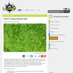 How-To: Moss Shower Mat