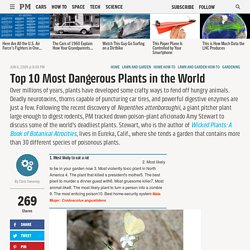 Most Dangerous Plants