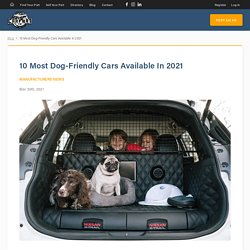 10 Most Dog-Friendly Cars Available In 2021