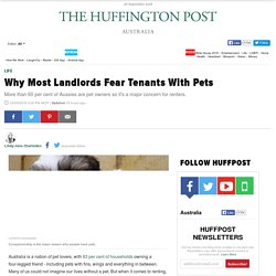 Why Most Landlords Fear Tenants With Pets