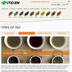 Most Popular Types of Tea