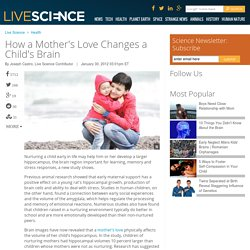 How a Mother's Love Changes a Child's Brain