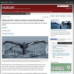 Animals' Wing and Fin Motions Share Universal Propulsion Geometry