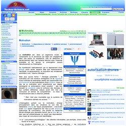 Définition Motivation - Encyclopédie scientifique en ligne