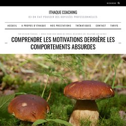 Comprendre les motivations derrière les comportements absurdes