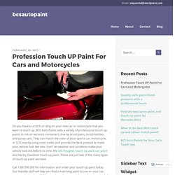 Profession Touch UP Paint For Cars and Motorcycles