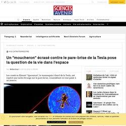 Un moucheron écrasé contre le pare-brise de la Tesla pose la question de la vie dans l'espace