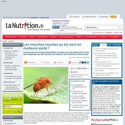 Les mouches nourries au bio sont en meilleure santé !