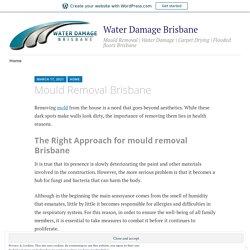Mould Removal Brisbane – Water Damage Brisbane