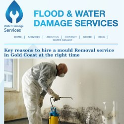 Hire a mould Removal service in Gold Coast at the right time