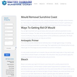 Mould Removal Sunshine Coast - Water Damage Sunshine Coast