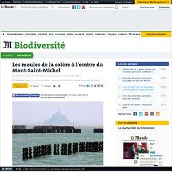 Les moules de la colère à l'ombre du Mont-Saint-Michel