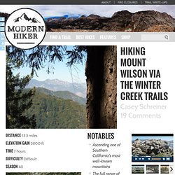 Hike Mount Wilson via Winter Creek