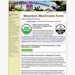 Mountain Mushroom Farm-Certified Organic Shiitake Mushrooms - Let's Grow Mushrooms