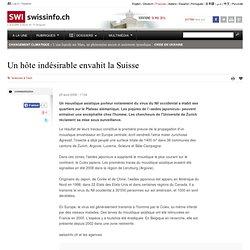 SWISSINFO 28/08/09 Un hôte indésirable envahit la Suisse