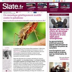 SLATE 01/10/09 Un moustique génétiquement modifié contre le paludismeSaura-t-on bientôt transformer ce redoutable ennemi en un p